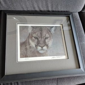 Other - Cougar Limited edition print